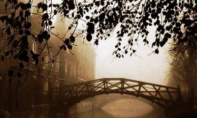 """【书香sbf888•为你读书】动心泪目!""""春天的诗会""""朗诵音乐会展播——《再别康桥》 ... ..."""