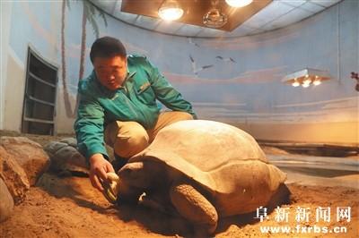 """北京动物园""""神器""""防寒 - 社会 阜新新闻网"""