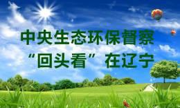 """【中央生态环保督察""""回头看""""在辽宁】市审计局把环境保护和自然资源资产管理使用情况 ..."""