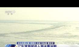 辽东湾海域进入海冰重冰期