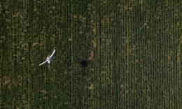 智能化设备助力水稻田间管理